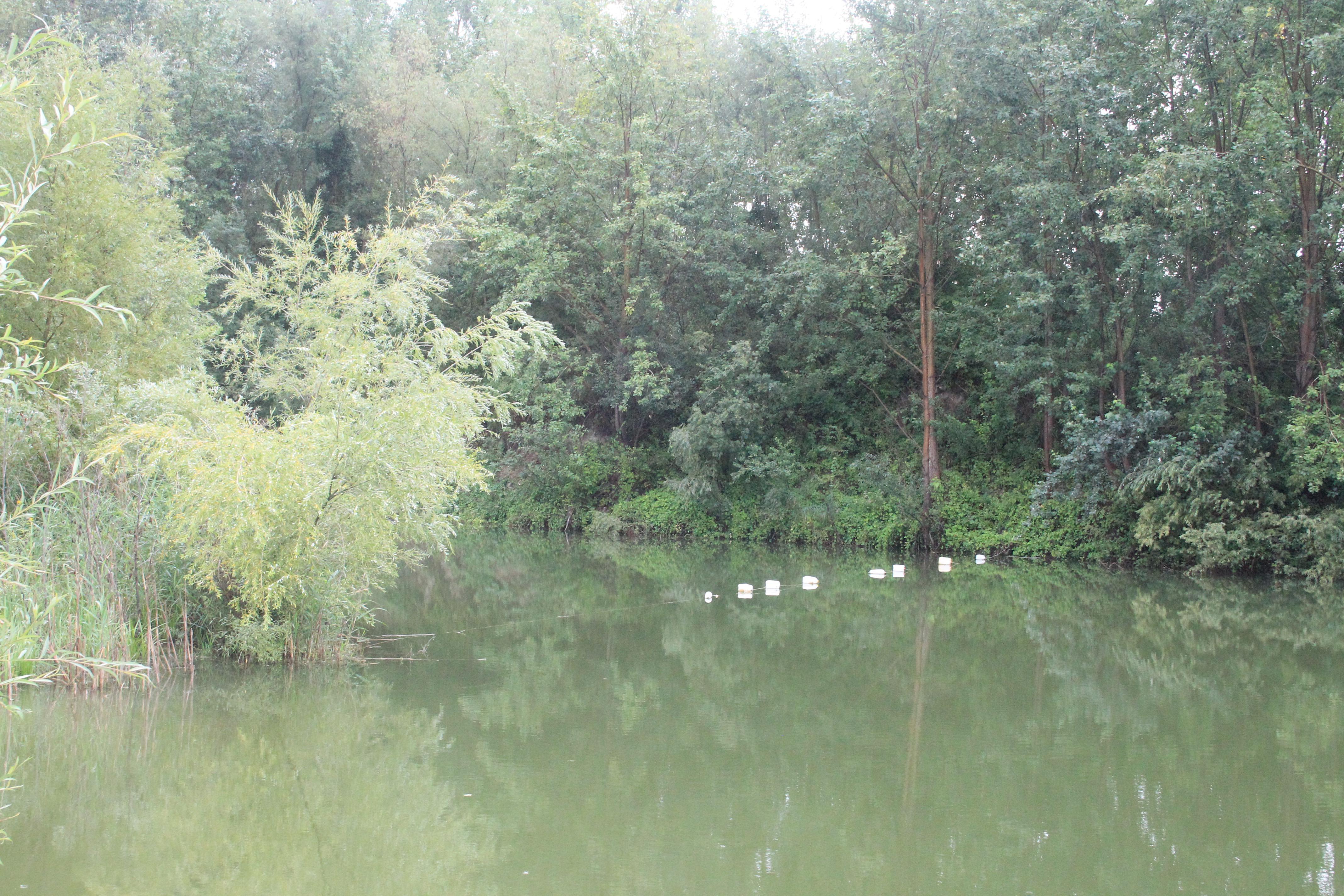 Waller Hotspot See Schongebiet 1