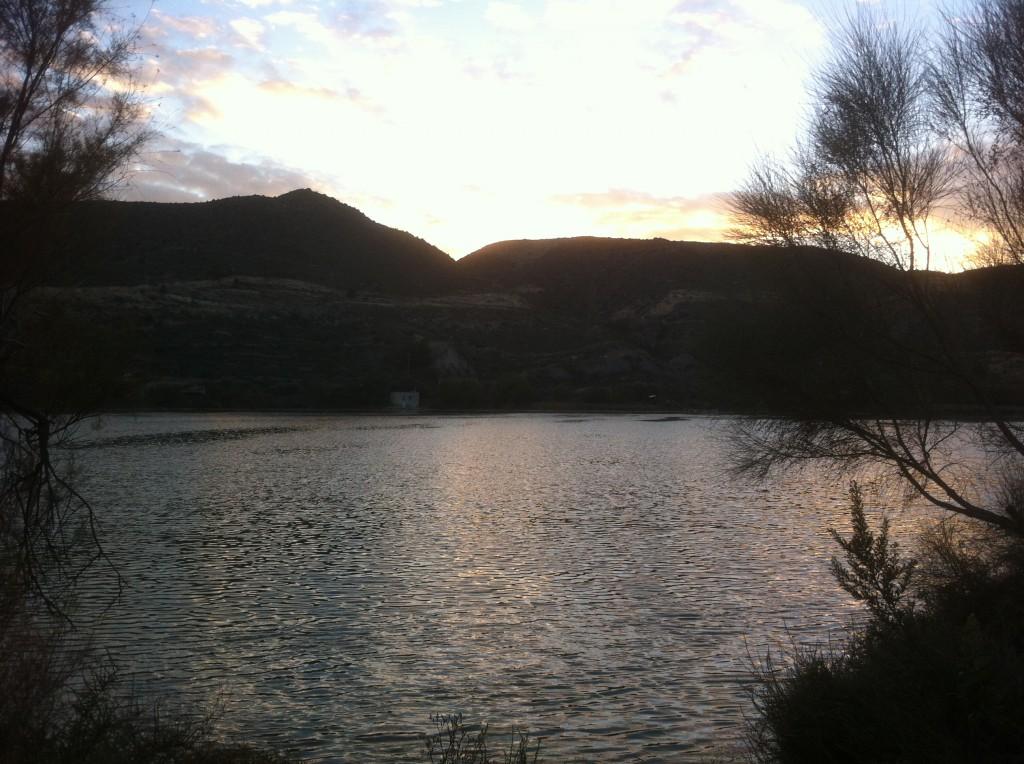 Mequinenza Angeln - Welsangeln Ebro